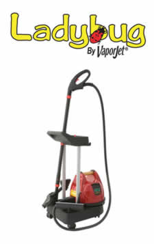 Ladybug Steam Cleaners